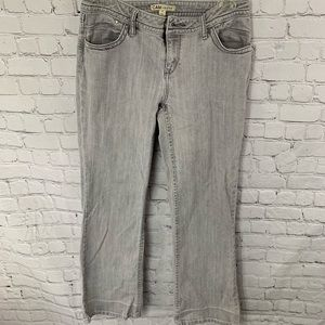 CAbi jeans Contemporary 837R size 4 gray